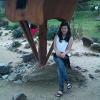 Thao Tran