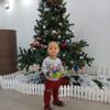 Chi Quỳnh