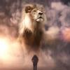 Lion  Nguyễn