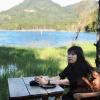 Nhu Quynh Tran