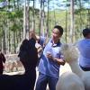Bo Huynh