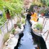 Hồ Quỳnh  Vân