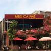 Cà phê Meo