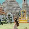 Thao Chi Vu