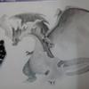 toriquach