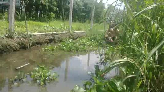 Nông Trại Tam Nông