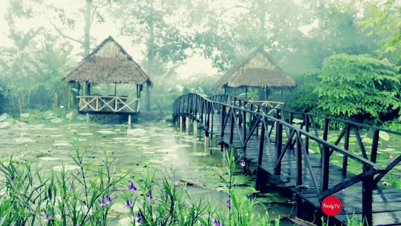 Thiên đường du lịch sinh thái Cần Thơ